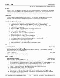 Sharepoint Developer Resume Best Of Awesome Summary Example For