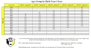 Age Group By Birth Chart