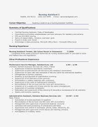 Resume Career Objective Sample Sample Resume Teacher Word Format New
