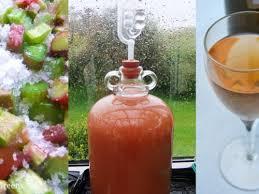 rhubarb wine recipe and full winemaking