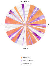 Example Of A Narcoleptic 24 Hour Sleep Wake Cycle Clock