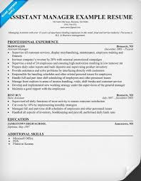 Best Buy Resume Examples Critical Essays Uk Essay Dissertation Writing Services