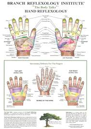 Hand Body Chart Hand Reflexology Charts Tips For Recognizing A Good