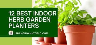 12 best indoor herb garden kits to grow