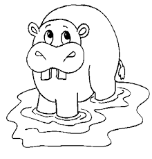 Baby Hippo Coloring Pages Courtoisiengcom