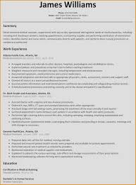 Business Resumes Templates Sample Pdf Resume Examples For Nurses