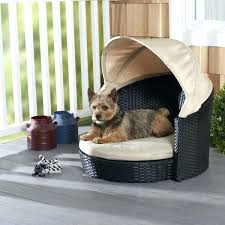 Minimalist Dog Bed Heating Pad G1044182 Dog Bed Outdoors Enchanted ...