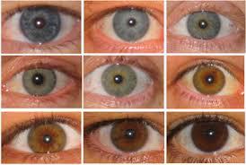 Eye Colors Eye Color Chart