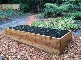 nice cedar raised garden beds