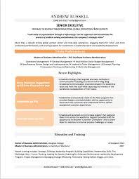 Cio Resume Resumes 2017 Sample Pdf Examples 2013 Thomasbosscher