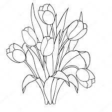 Tulpen Bloemen Sier Zwart En Wit Kleurplaten Stockvector