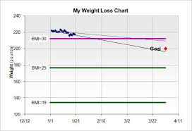 Personal Weight Loss Chart Templates 10 Free Docs Xlsx