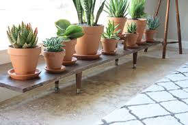 Simple Wooden Plant Stand