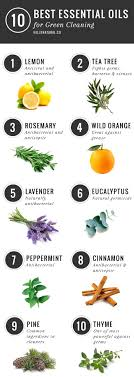 10 best essential oils for cleaning 1