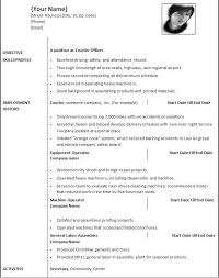 Example Of Personal Resumes Template Personal Resume
