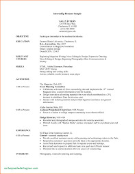 Resume Template Simple Resume Template Sample For Summer Unique Of