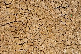 salicylic acid it may dry and thin