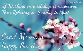Good Morning Wishes On Sunday Quotes Images And Pictures
