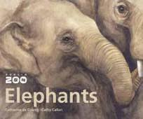 dublin zoo books dvd s