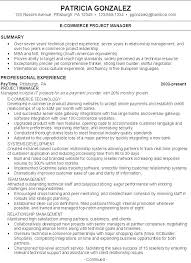 Examples Of Marketing Resumes Res Combo Pg Resume Professional Summary Template Statement Examples