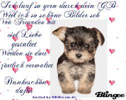 Gästebuch Sprüche Pinnwand Bildergb Picsgästebuch Spruch Facebook