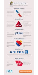Airline Requirements For Traveling With An Emotional Support