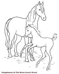 Small Picture Baby Horse Coloring Pages Coloring Pages