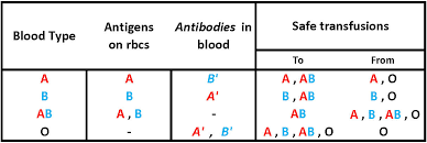 Abo Blood Group Transfusions
