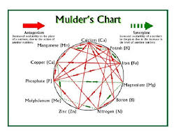Mulders Chart Mulders Chart Shows The Interaction Between Minerals