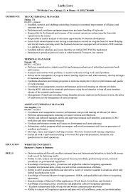 Terminal Manager Resume Samples | Velvet Jobs