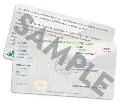 medical marijuana essay medical marijuana card renewal system isnt working for patients