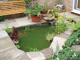 how to resolve green water in a pond