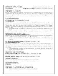 Career Summary Examples For Resume Gorgeous Summary For Resumes Llun