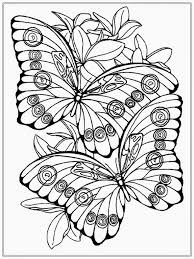 59 Stunning Butterfly Coloring Sheets Free Image Inspirations