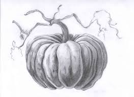 pumpkin drawing with shading. still life with fall pumpkins - lessons tes teach pumpkin drawing shading