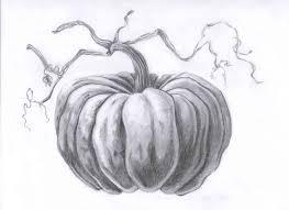 pumpkin drawing. still life with fall pumpkins - lessons tes teach pumpkin drawing h