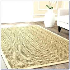 pottery barn rugs 8x10 pottery barn sisal rug medium image for excellent wool sisal rugs pottery pottery barn rugs 8x10