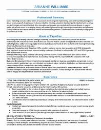 Resume Executive Summary Example Lovely Executive Assistant Resume