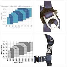 Dbi Sala Exofit Size Chart 3m Dbi Sala Exofit Xp 1110301 Tower Climbing Harness Front Back Side D Rings B