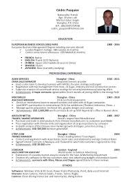Travel Resume Sample