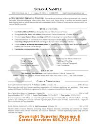 internal audit resume