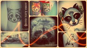 фото тату енот интересные примеры готовых татуировок для создания