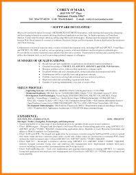 12 Application Developer Resume Job Apply Form