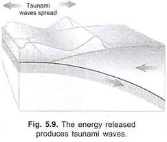 essay on tsunami top essays natural disasters geography  the energy released produces tsunami waves