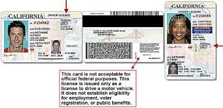 For Immigrants U News Issued · In Disqus California 000 Views s Year New 605 Driver's The Licenses Illegally Last