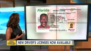 Florida's Out Rolling Area Driver 12 At Locations New Licenses Bay Dmv