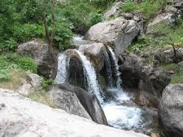 Природные заповедники Узбекистана Природа Узбекистана Это  Зааминский горно арчевый заповедник