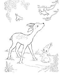 Small Picture Deer Coloring Pages Coloring Coloring Pages