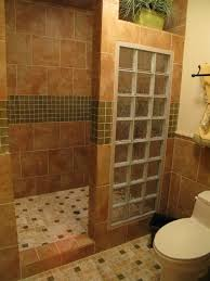 shower remodel ideas for small bathrooms. master bath remodel with open walk-in shower for empty nesters - bathroom designs decorating ideas hgtv rate my space glass block is old fashioned but i small bathrooms h
