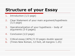 essay writing tips for writing essays pol no simple answers  12 structure